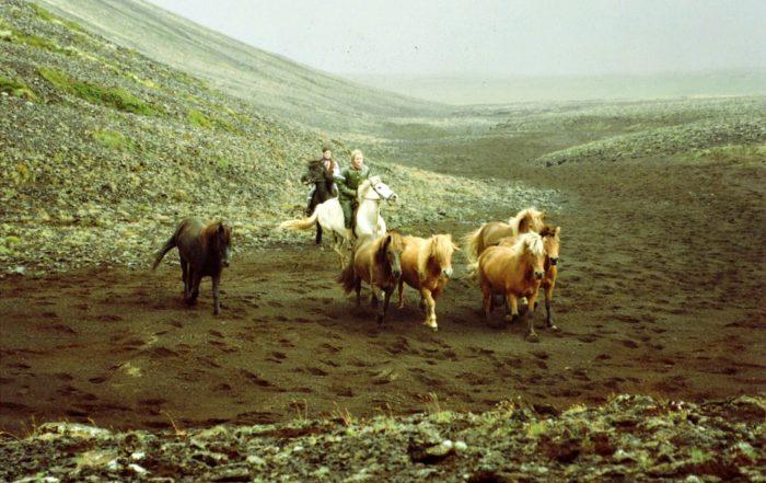 Ævintýri á norðurslóðum